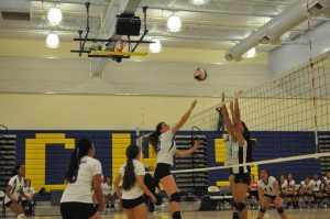 Girls volleyball face off against Wilcox High School