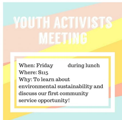 New Youth Activists Club is determined to create change at SCHS, and in the world