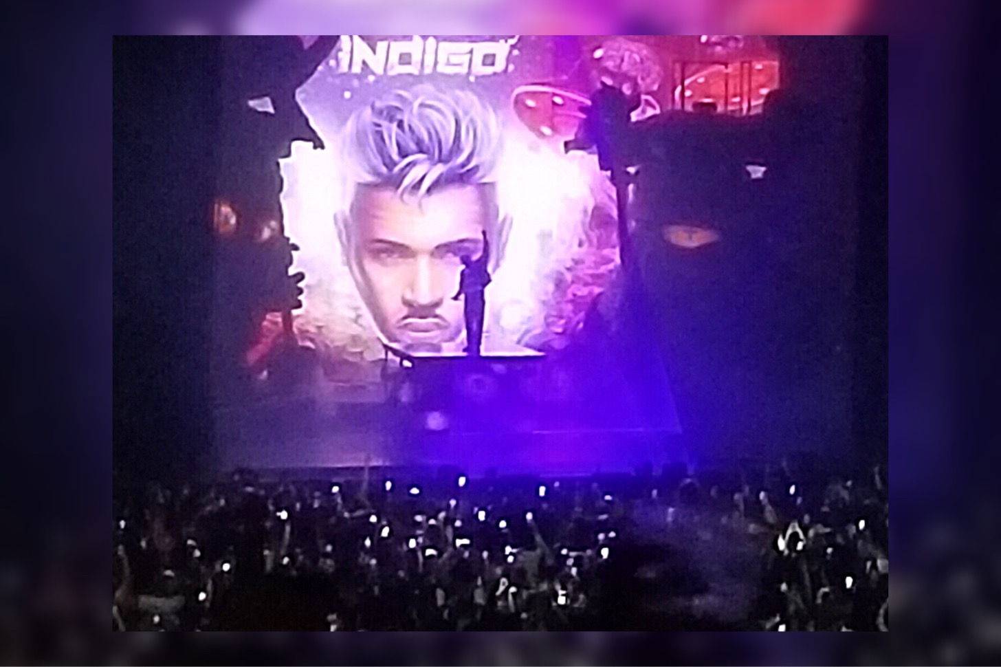 The visuals of the show added to the experience.