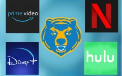 Students at SCHS use a myriad of different streaming services.