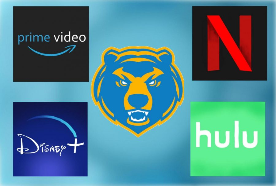 Students+at+SCHS+use+a+myriad+of+different+streaming+services.+