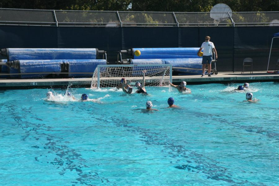 CAMPUS%3A+An+unconventional+water+polo+season