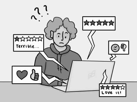 OPINION: Online rating systems are untrustworthy and misleading