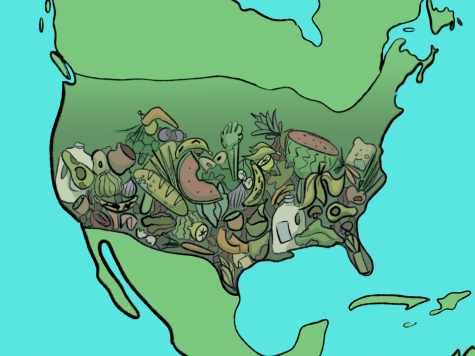 Compared to numerous other countries, America leads in food waste.